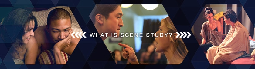 what is scene study article banner